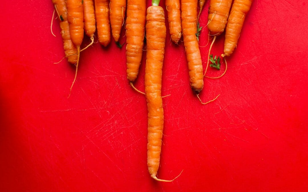 3 problems with the major gift as carrot analogy
